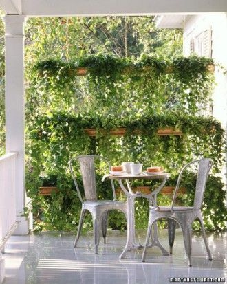 Ivy Porch Screen for front porch to hide the street light. Must be height adjustable...