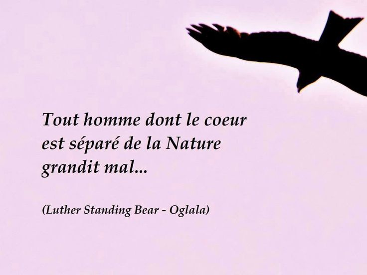 40 best J aime images on Pinterest | French quotes, Quotations and ...