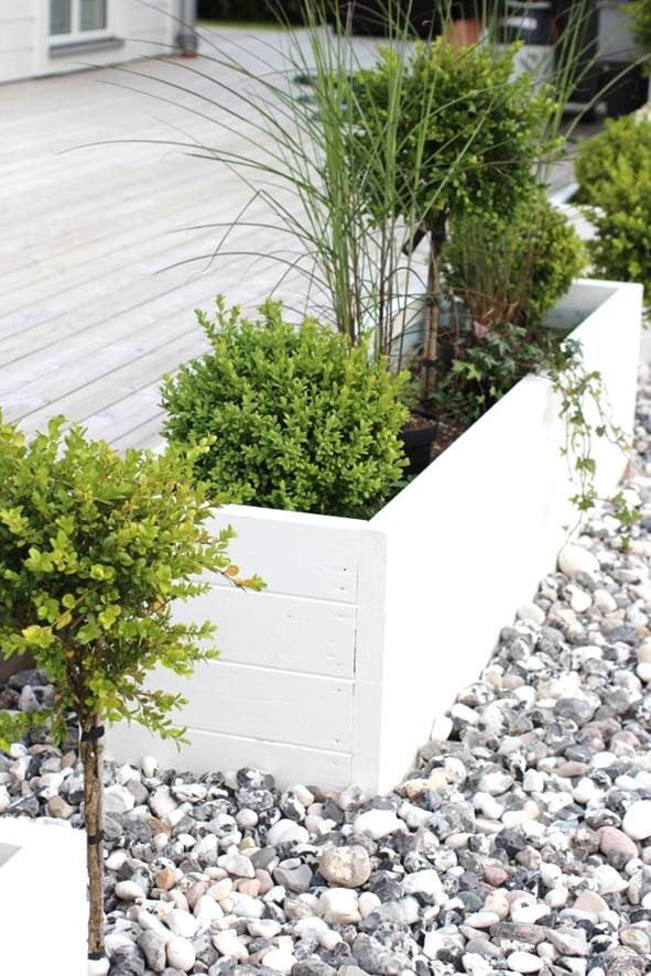 painted raised garden bed | Source: http://awayto-garden.com/creating-a-family-friendly-garden/
