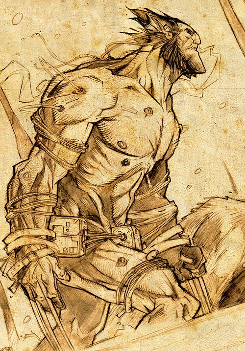 John Timms - Masters of Anatomy