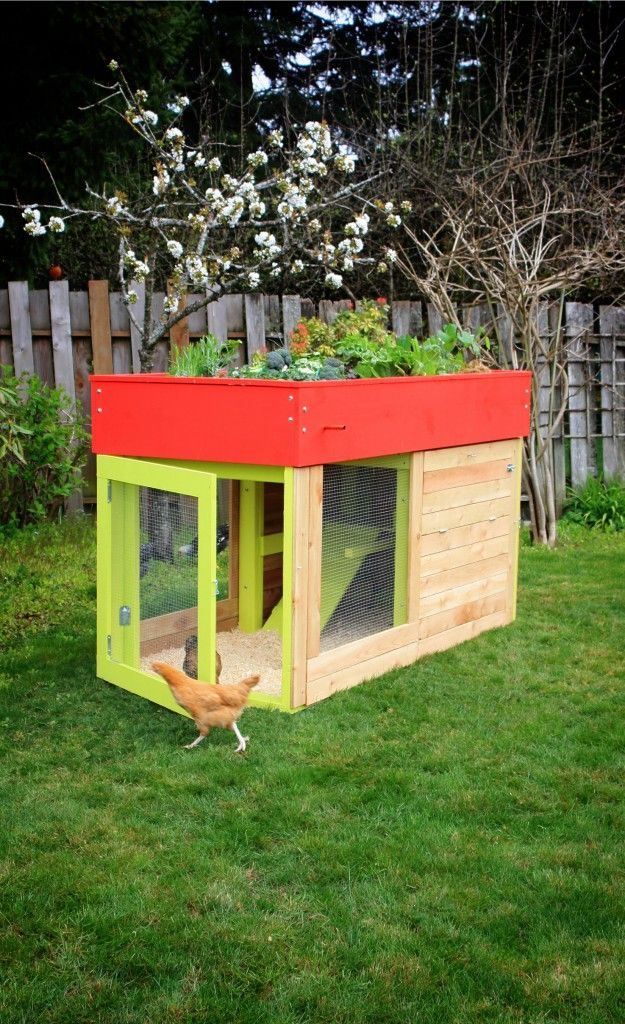 I LOVE this idea for a chicken coop with rooftop garden. No