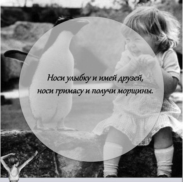 #юмор #цитата #beauty_цитата