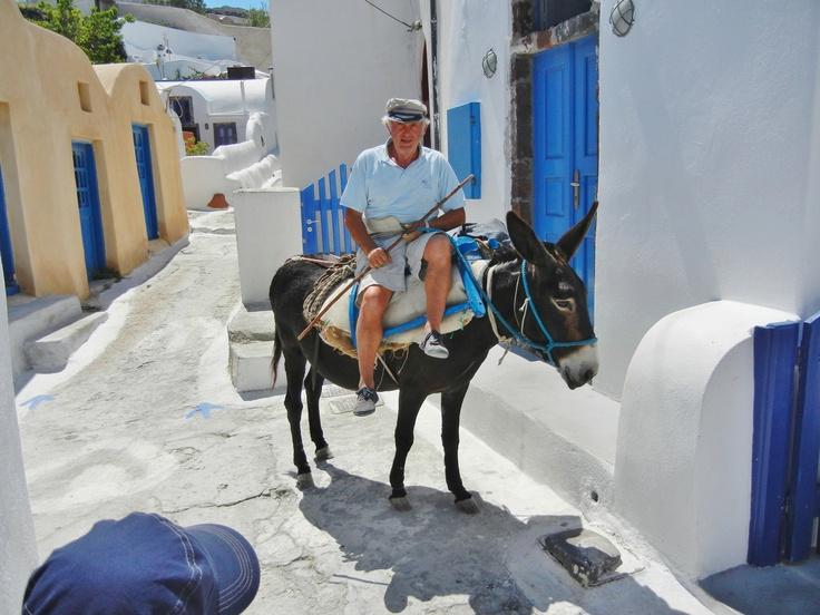 Donkey riding, Finikia
