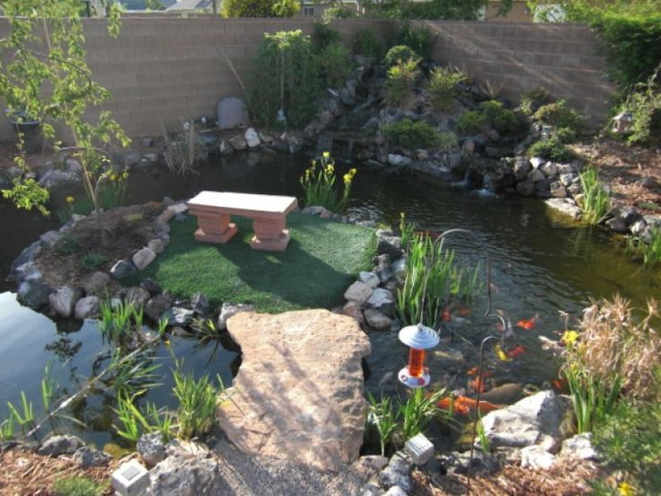 12 Best Ponds By Yardshare Images On Pinterest