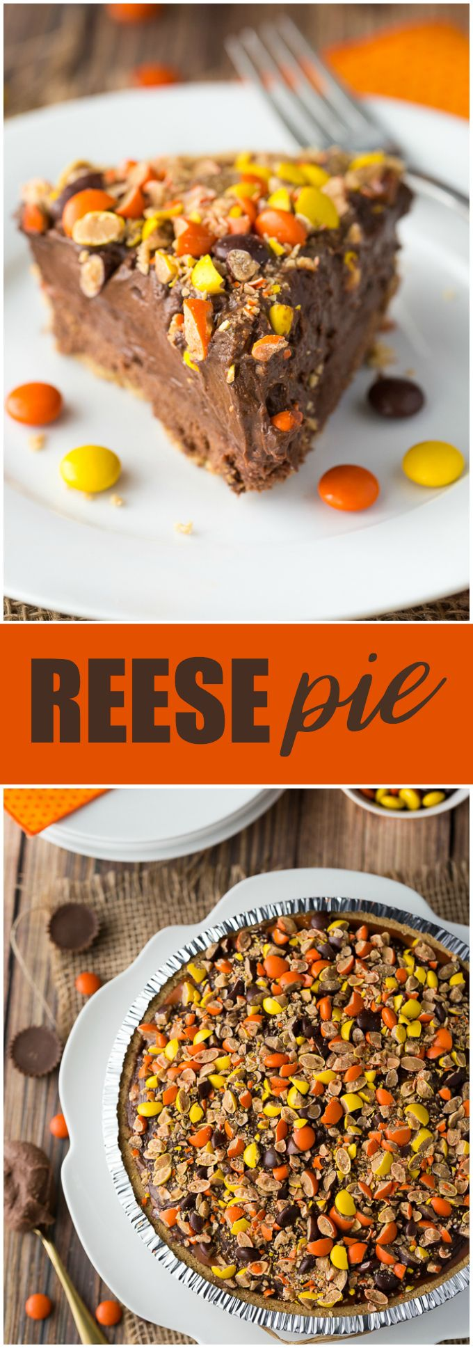 REESE Pie - This decadent no-bake dessert is all about REESE! It has a thick rich layer of REESE Spreads followed by a layer of REESE Peanut Butter Cups. Top that with a creamy, smooth chocolate/peanut butter pudding layer and a REESE'S Pieces colourful finish. #DoYouSpoon #ad