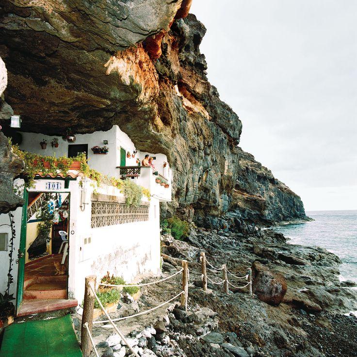Klippenbewohner auf #Teneriffa, Kanarische Inseln.