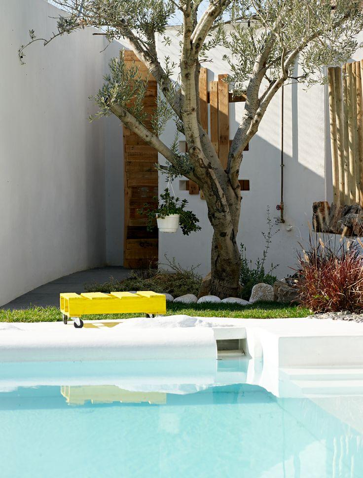 Λεπτομέρεια Πισίνας / Back yard swimming-pool