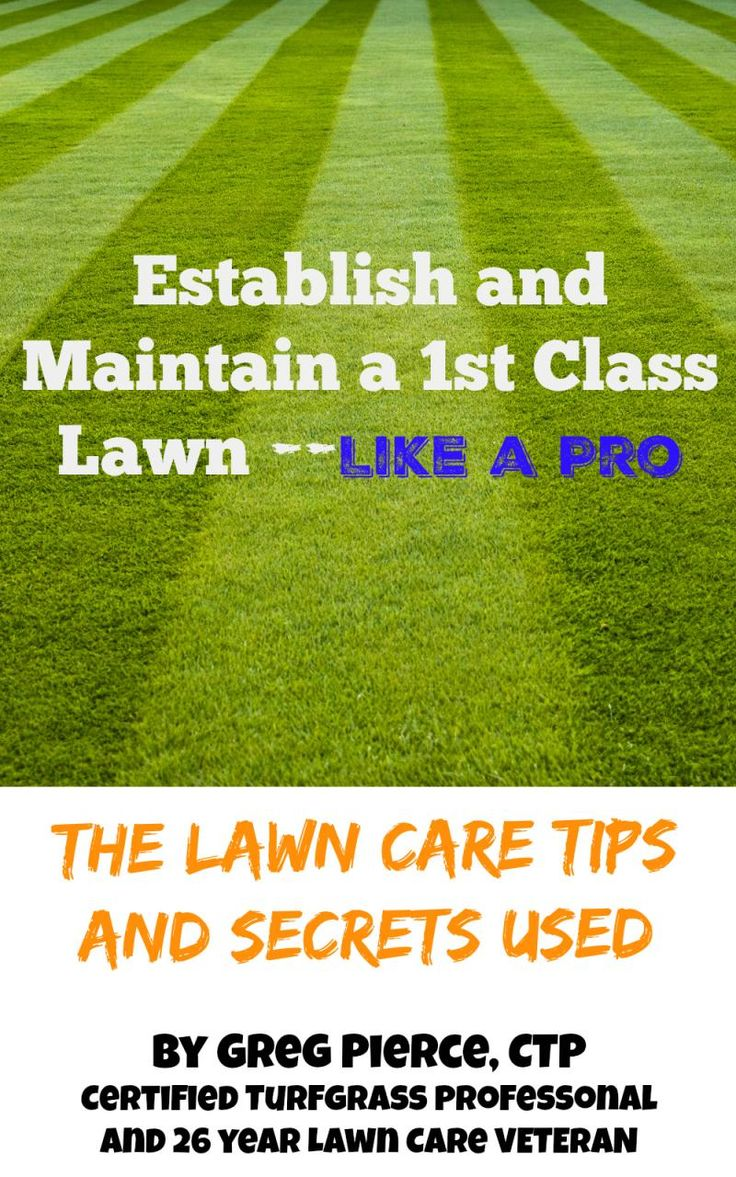 Establish and Maintain a 1st Class Lawn Like a Pro-Get our book to learn how to get your own pro-class lawn.