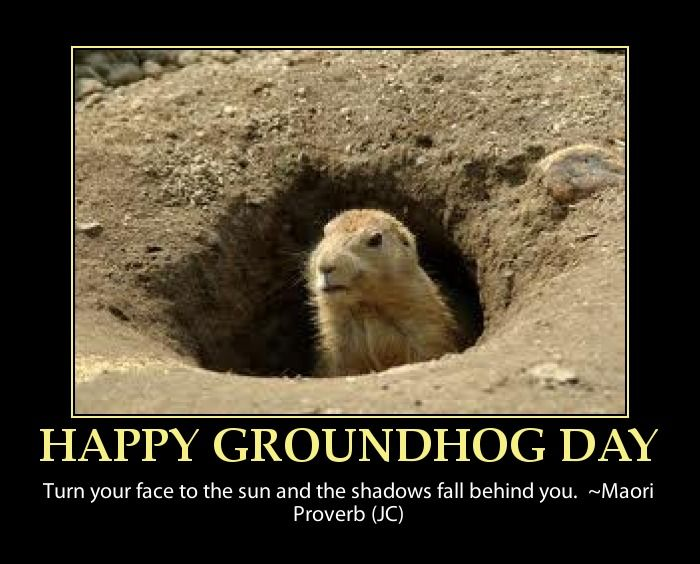c60230e78ec6552c7623c8044bc436fd baked potato soup baked potatoes 90 best groundhog's day! images on pinterest ground hog, funny,Funny Groundhog Meme