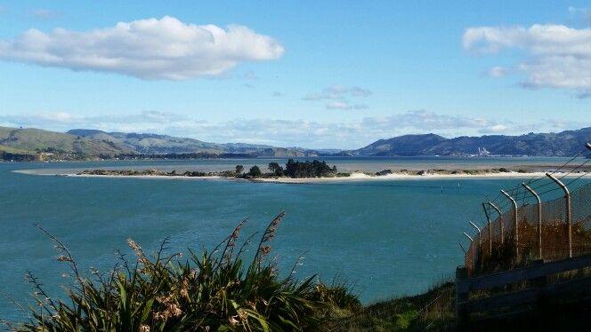 Tautuku Catlins NZ