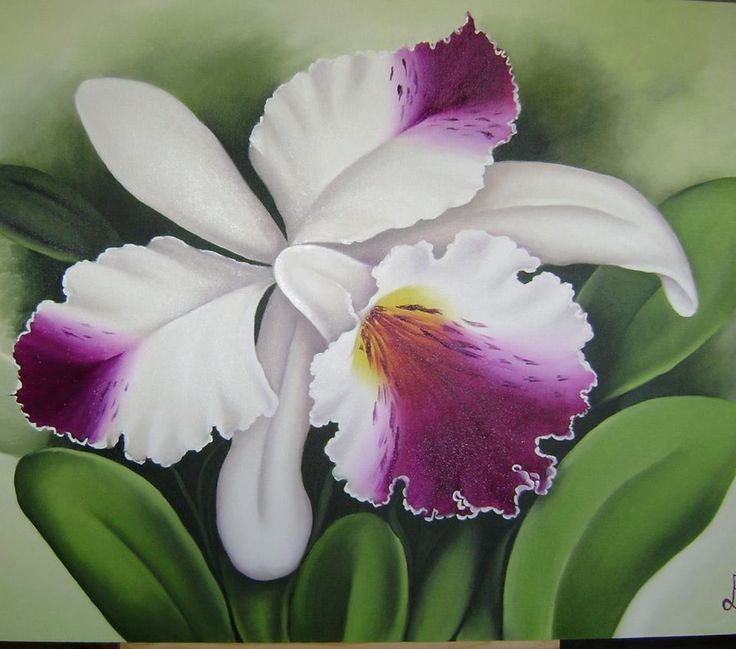 pintura orquideas - Pesquisa Google