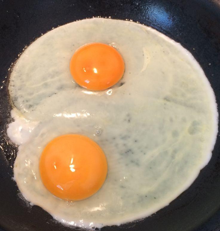 Eggs, glorious eggs.