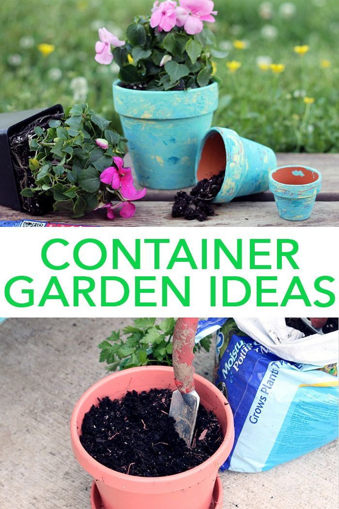 c6032466815823130662e1e7fff559bd - Best Soil To Use For Container Gardening