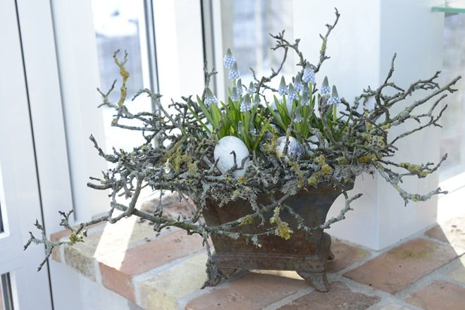 Magnolia twigs with Muscari and eggs for spring/Easter display.