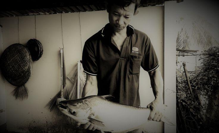 Pangasius - cuộc chiến sinh tồn thầm lặng | Mạng Thủy sản Việt Nam