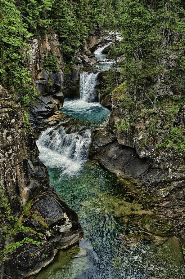 Paneveggio Natural Park, beneath the Pale di San Martino, in the Italian Dolomites