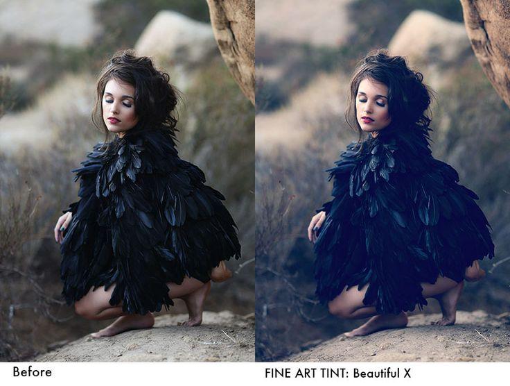 JD Beautiful World Actions: Fine Art Tints   Jessica Drossin