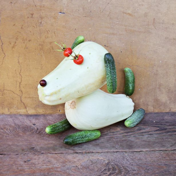 hello, Wonderful - HOW TO MAKE CUTE VEGETABLE ANIMALS