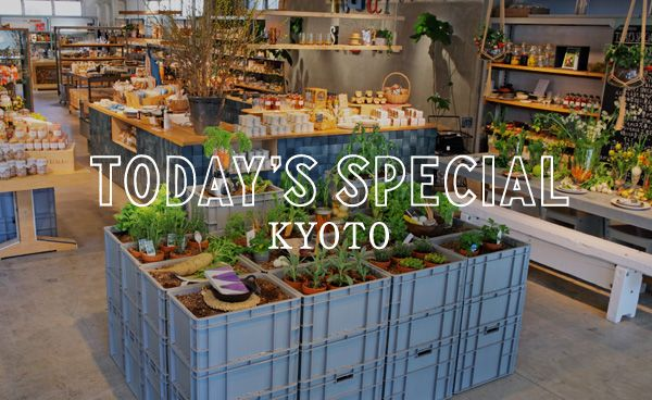 TODAY'S SPECIAL Kyoto GRAND OPEN