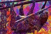 """New artwork for sale! - """" Sloth Zoo Depend Sleep Tree  by PixBreak Art """" - http://ift.tt/2w88ldo"""