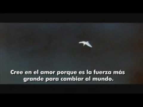 MI QUERIDO PEDRO GAVIOTA…  (((Sesiones y Cursos Online www.ciaramolina.com #psicologia #emociones #salud)))