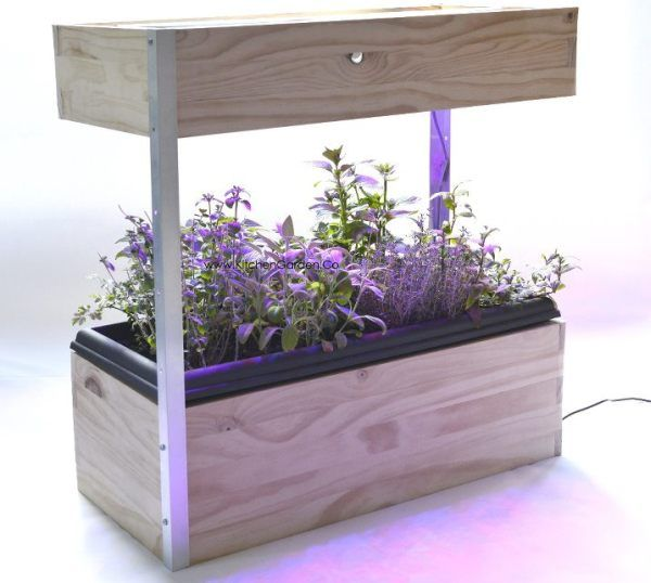The Kitchen Garden Lets You Grow Fresh Veggies All Year Round | Home Chunk. Indoor  GardeningHerb ...