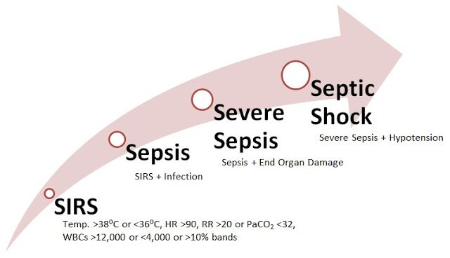 --Working to make others aware of sepsis...by a sepsis survivor