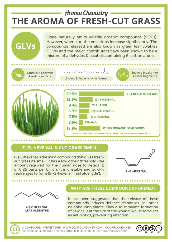 Aroma Chemistry - The Smell of Fresh Cut Grass #infographic
