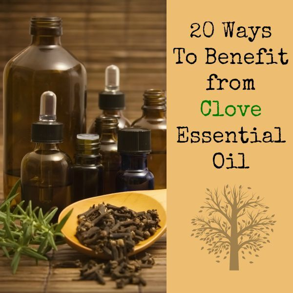 Mitigating the pain and suffering from a toothache is just one of the many ways to benefit from clove essential oil. Here are 20 ways to use clove oil some of which may surprise you.  via www.BackdoorSurvival.com