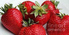 Barbara Griffin - Strawberries Digital...