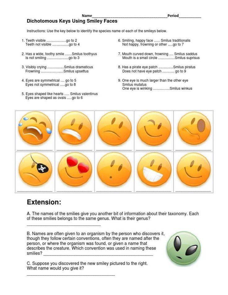 Dichotomous Key Worksheet Pdf Dichotomous Keys Worksheet