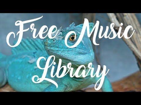 Royalty Free Music  | BdubsBeat 4 (Vlog Music) - Dj Quads #freemusic #nocopyright