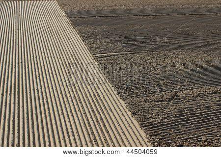 Photo : sand texture