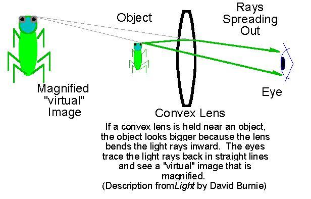 Convex Lens Vs Concave Lens : Best robot colouring pages images on pinterest