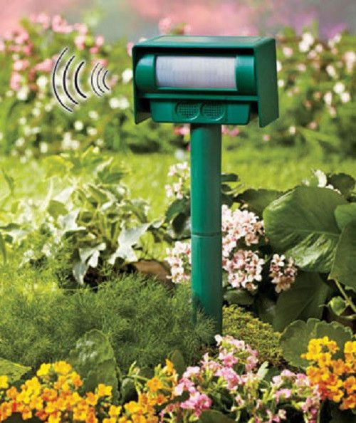 Summer Solutions For Pests Yard Work More: Solar Animal Repeller Ultrasonic Sound Yard Lawn Squirrel