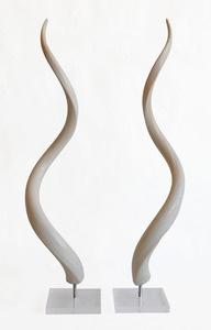 Image of Kudu Horn Bone Inner Mounted on Lucite