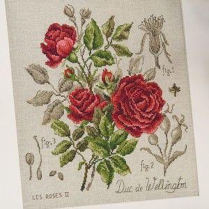 Lin : Étude à la rose « Duc de Wellington » (maxi-grille) à broder au point de croix