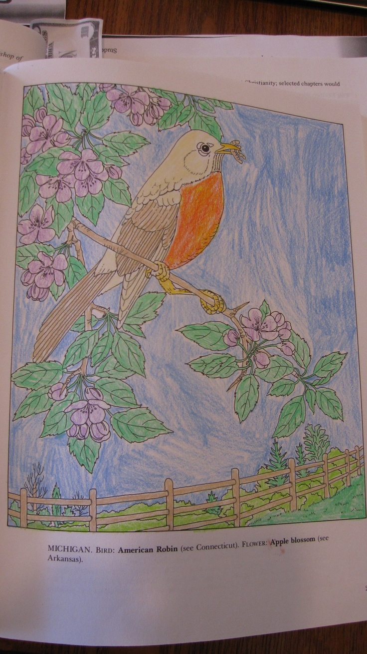 Katelyn P. (Under 12 division) from State Birds and Flowers Coloring Book: http://store.doverpublications.com/0486264564.html