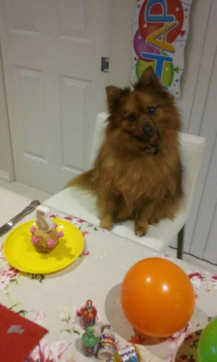 Ariel's 5th Birthday