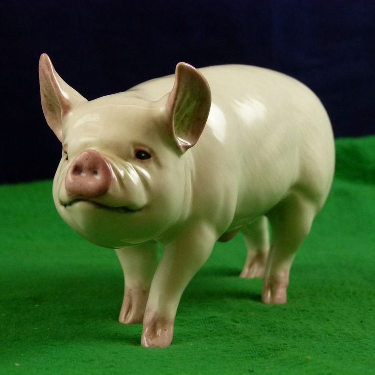 Vintage Beswick Very Rare Middle White Pig/Boar Figurine F3673 USC | eBay
