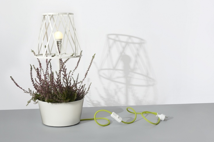 Green Lamp by SIESTA   SHOWROOM