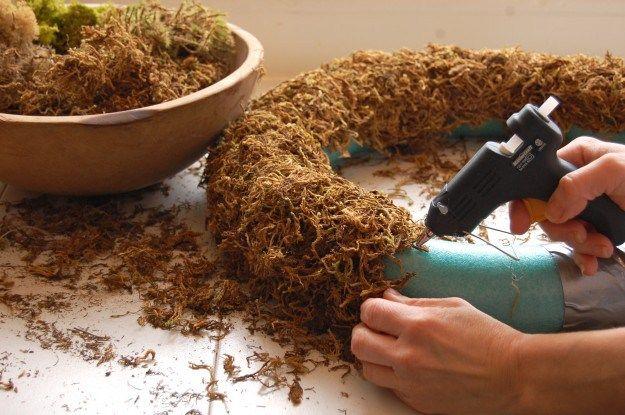gluing moss