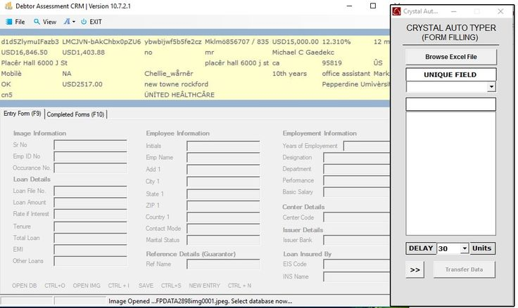 HOW TO AUTO TYPE DEBTOR FORM FILLING PROJECT