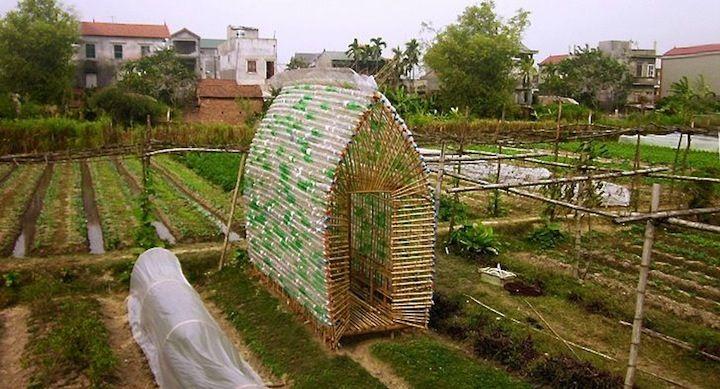 Vivero para plantas botellas bambu 8 huerto escolar for Vivero casa jardin