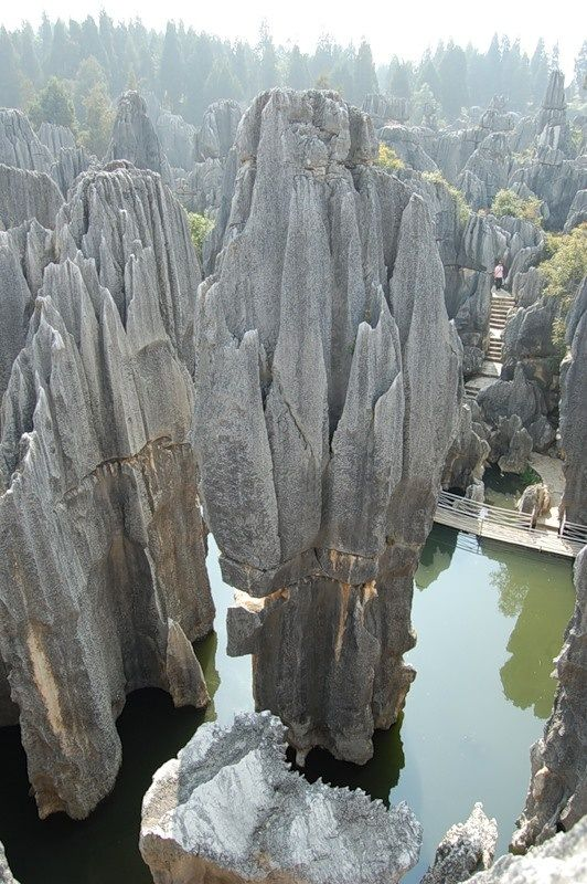 The Stone Forest (Shilin), China  Many of the trees within the forest in China's remote Yunnan Province are rock hard, literally. The area, which spans nearly 200 square miles, was underwater 270 million years ago, and the sea floor was covered with limestone sediment. Gradually, the seabed rose and the water dried up. As rain and wind eroded the weaker rock, the stronger limestone spires began to take shape. Now they rise skyward, surrounded by leafy trees.