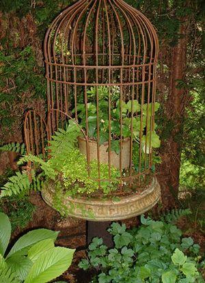 ouvrez la cage aux oiseaux !!!