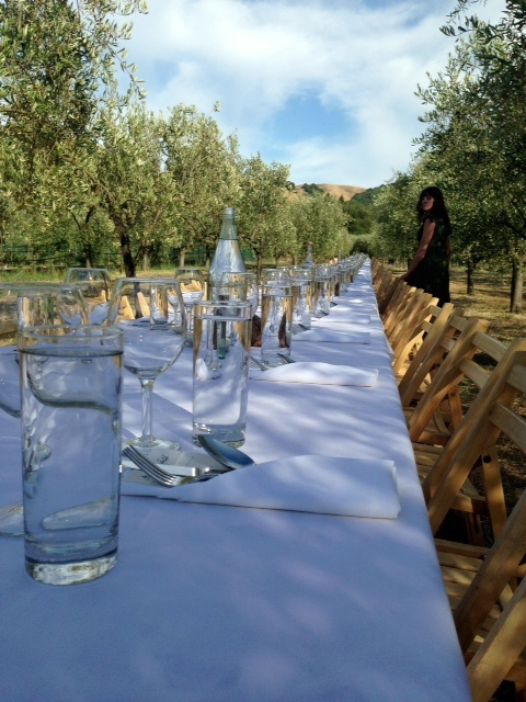 Mcevoy Ranch Getting Ready For A Farm To Table Dinner In The Olive Orchards With Outstanding Field Petaluma Ca