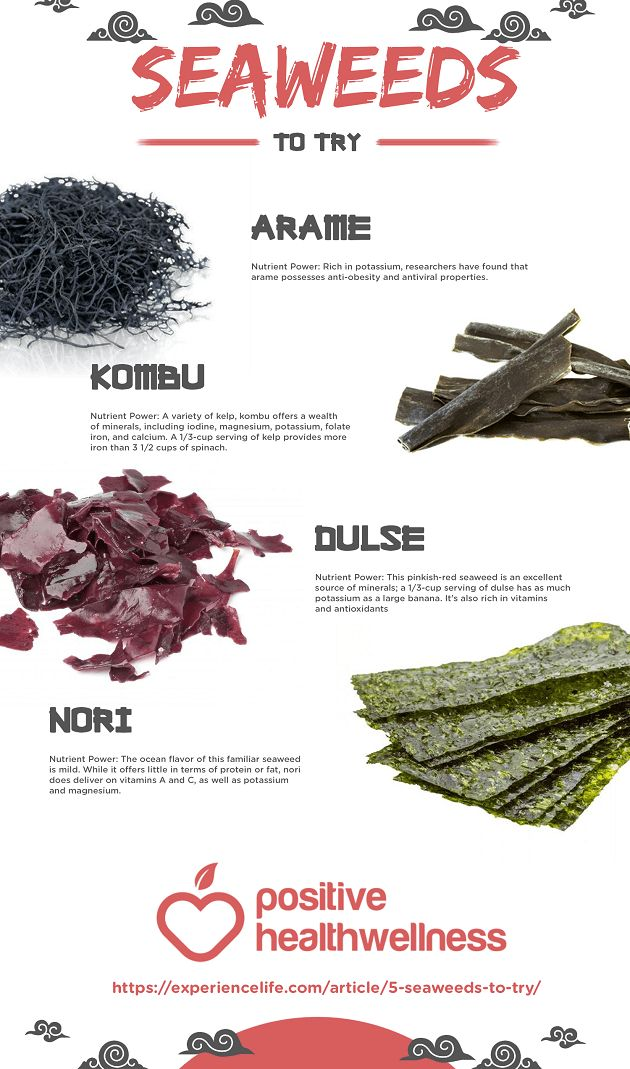 5 Seaweeds To Try – Positive Health Wellness Infographic