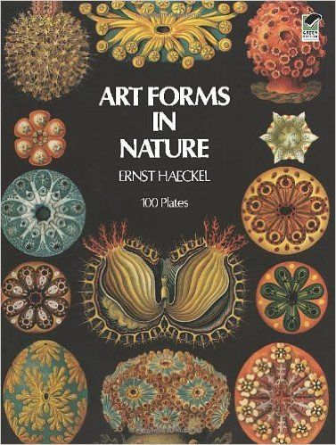 Art Forms In Nature Dover Pictorial Archive Ernst Haeckel 0800759229871 Amazon
