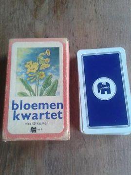 Oud-hollands Jumbo bloemenkwartet met van die moeilijke namen...stengelloze…
